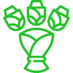 Questa immagine ha l'attributo alt vuoto; il nome del file è celebration_lineal_exp_Artboard-02-verde.png