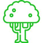 Questa immagine ha l'attributo alt vuoto; il nome del file è tarro-de-idiomas-lineal-91-verde.png